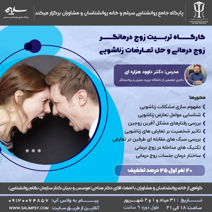 تربیت زوج درمانگر، زوج درمانی و حل تعارضات زناشویی